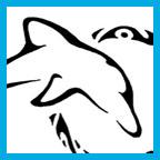 dolphinth.jpg
